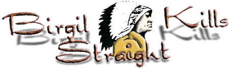 BIRGIL KILLS STRAIGHT-Logo